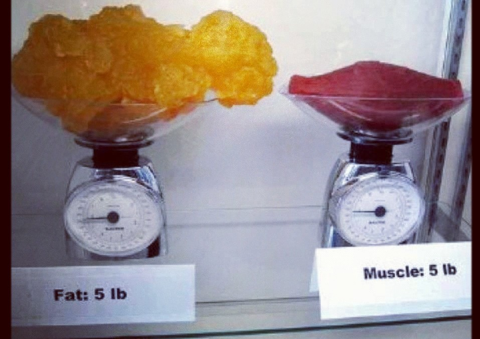 Why The Scale Doesn't Tell The Full Story